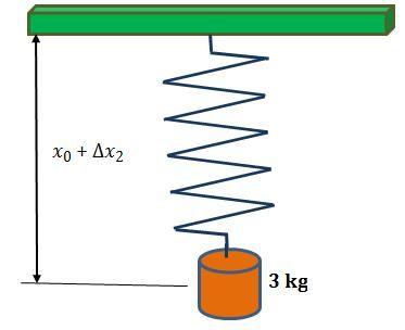 fuerza recuperadora ley de hooke Carácter vectorial de la fuerza elasticidad de un material cuerpos elásticos fuerzas restauradoras aplicación de la ley de hooke junio (15).