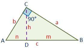 Dibujo del triángulo rectángulo en el teorema del cateto