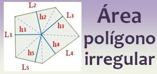 Área del polígono irregular