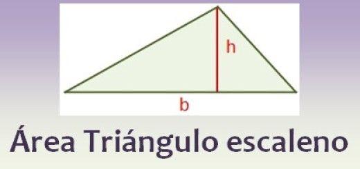 Área de un triángulo escaleno