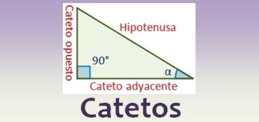 Catetos