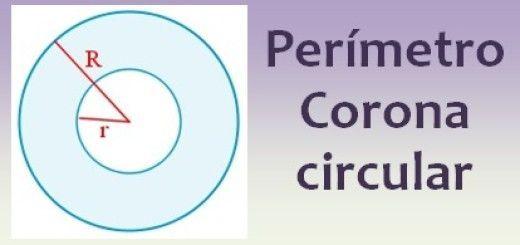 Perímetro de la corona circular