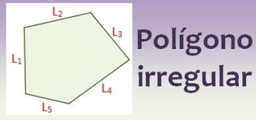 Polígono irregular