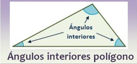 Ángulos interiores de un polígono
