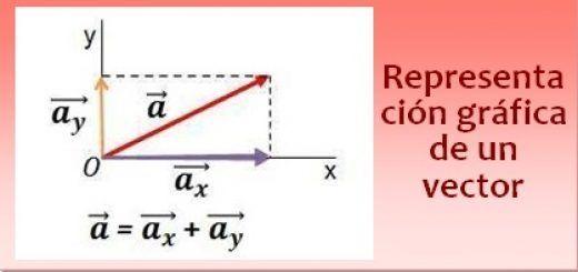 Representación gráfica de un vector