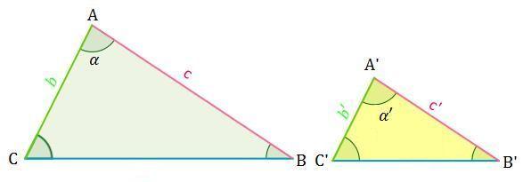 Dibujo del criterio 2 un para triángulos semejantes
