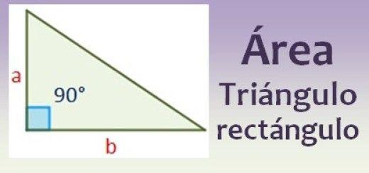 Área de un triángulo rectángulo