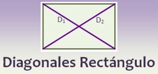 Diagonales del rectángulo