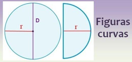 Figuras curvas: círculo, semicírculo y corona circular