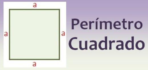 Perímetro del cuadrado
