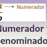 Numerador y denominador