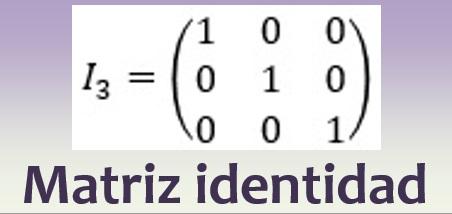 Matriz identidad