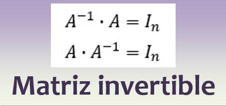 Matriz invertible