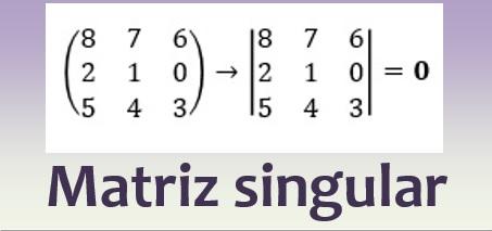 Matriz singular